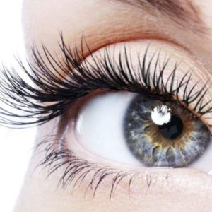 eyelash-perm-results-stylish-brows