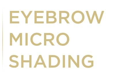 microshading-eyebrow-powder-fill-brows-miami-weston-florida-stylish-brows-gold-banner-desktop