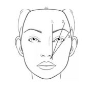 caliper4-stylish-brows-miami