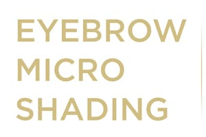 microshading-eyebrow-powder-fill-brows-miami-weston-florida-stylish-brows-gold-banner-desktop